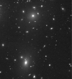 B/W image of the Coma       Galaxy Cluster